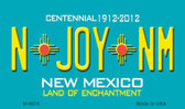 N Joy NM New Mexico Novelty Magnet