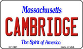 Cambridge Massachusetts State License Plate Magnet M-10991