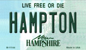 Hampton New Hampshire State License Plate Magnet M-11144