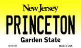 Princeton New Jersey State License Plate Magnet M-10151