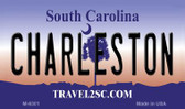 Charlestown South Carolina State License Plate Magnet M-6301