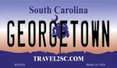 Georgetown South Carolina State License Plate Magnet M-6302