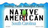 Native American South Carolina State License Plate Magnet M-4265