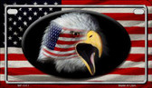 American Flag Eagle Metal Novelty Motorcycle License Plate