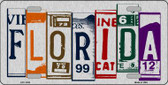 Florida License Plate Art Brushed Aluminum Metal Novelty License Plate