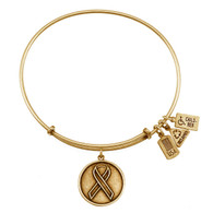 Wind and Fire Awareness Ribbon Charm with Bangle WF220