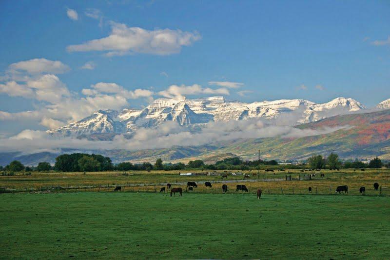 Rocky Mountain Farms