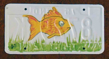 Goldfish License Plate by John Taylor