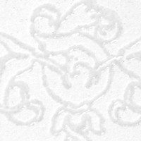 Stampendous - Embossing Powder Detail Clear