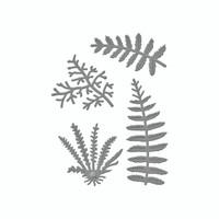 Spellbinders D-Lites  -  Ferns