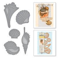 Spellbinders Die D-Lites - Sea Shells