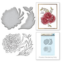 Spellbinders Stamp and Die Set from the Earth Air Water Collection by Stephanie Low : Chrysanthemum