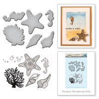 Spellbinders Stamp and Die Set from the Earth Air Water Collection by Stephanie Low : Starfish