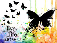 Visible Image Stamps - Live Life Now