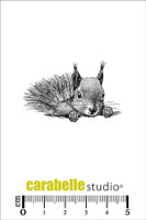 Carabelle Mini Stamps - Squirrel, Surprise!