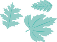 KaiserCraft Dies - Autumn Leaves
