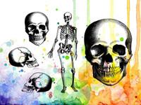Visible Image Stamps - Mr Bone Jangles