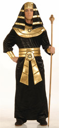 EGYPTIAN PHARAOH sheik king tut adult mens robe couples bible halloween costume