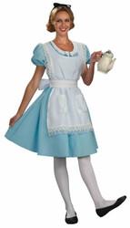 Alice in Wonderland Fairy Tale  adult womens Halloween Costume Standard Size