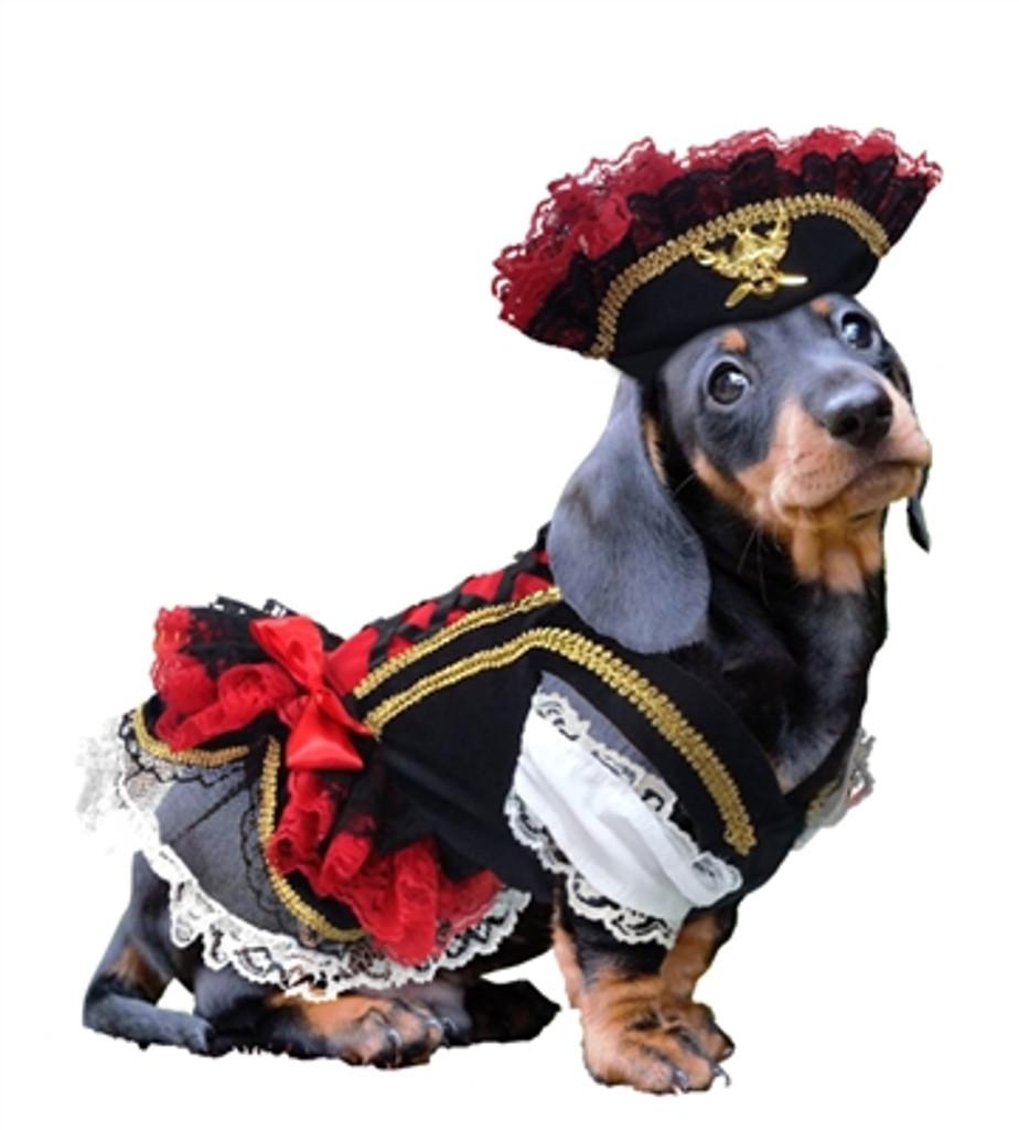 Swashbuckler Pirate Costume