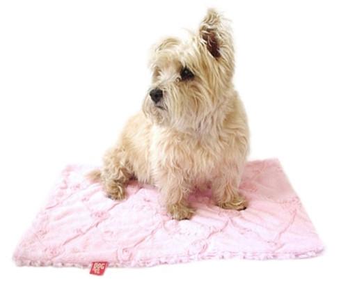 Pale Pink Roses Minkie Binkie Blanket
