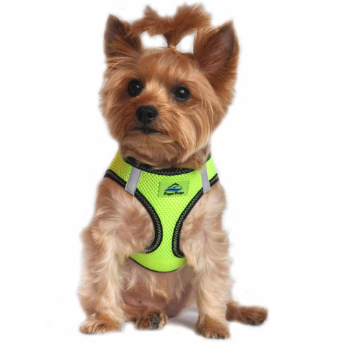 American River Dog Harness Top Stitch Collection - Iridescent Green