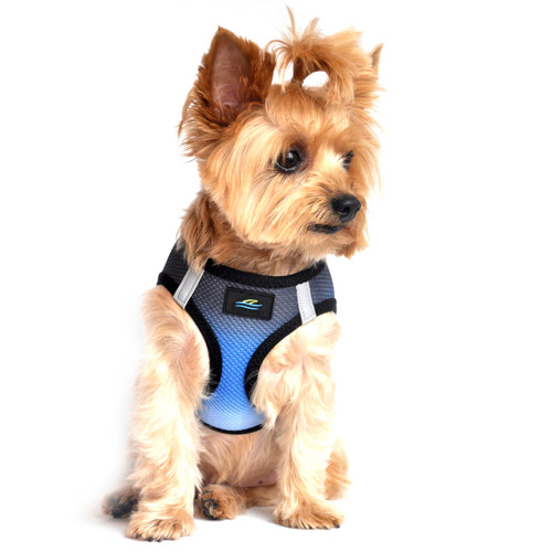 American River Dog Harness Ombre Collection - Midnight Sky