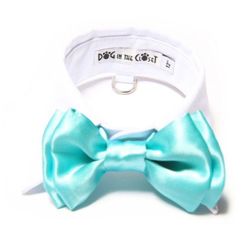 White Shirt Dog Collar with Aqua Blue Bow Tie
