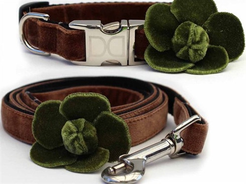 Camellia Collection - Olive- All Metal Buckles