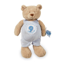 Milestone Plush Bear - Blue