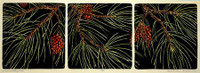 Long Needle Pine Print