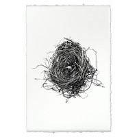 Bird Nest Study Print #8
