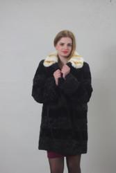 Persian Black Lamb/mink / Beige Rex collar