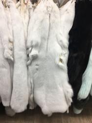 White Fox fur pelts/skins
