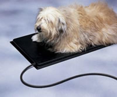 Large Allied Plastic Heated Pet Mat