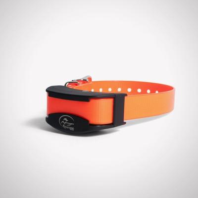SDR-AF Add a dog collar
