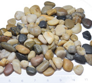 HALF PRICE:  1 lb Medium Stone Pebbles /  River Rock - Natural Mixed Colors (US Shipping only)