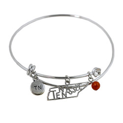 Tennessee State Charms Bangle Bracelet Silver