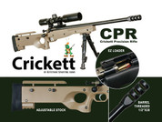 Crickett CPR-01536: CPR 22LR BL/TAN Package Crickett Precision Rifle