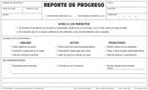 Progress Report, Triplicate (PR1-SPANISH)