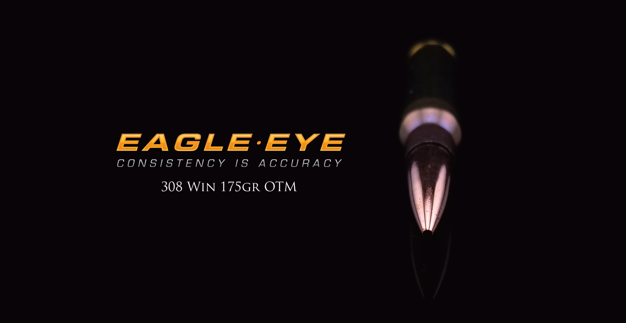 308 Win 175gr Hybrid by Eagle Eye Ammo