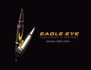 Eagle Eye Precision Match 260 Rem 130gr OTM Banner Image