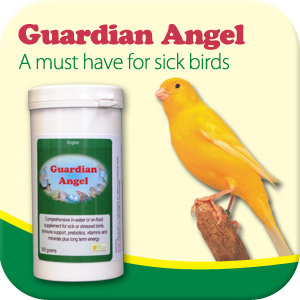 Sick bird supplement - Guardian Angel