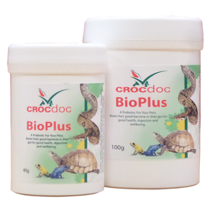 Powdered pre and probiotic to add to food or in water for reptiles