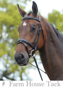 Kincade Padded Flash Bridle