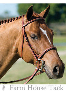 Rodrigo Pessoa  Fancy Stitched Padded Raised Bridle w/  Matching Reins