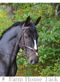 KL Select Italia Chase Bridle