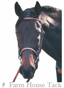 HDR Advantage Fancy Stitch Bridle