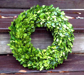 BOXWOOD COUNTRY MANOR WREATH - ROUND - 14""