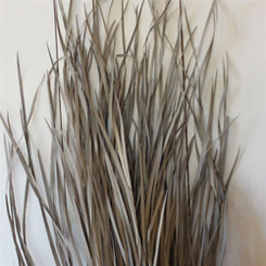 "Wild Grass - Taupe (44"" - 55"")"